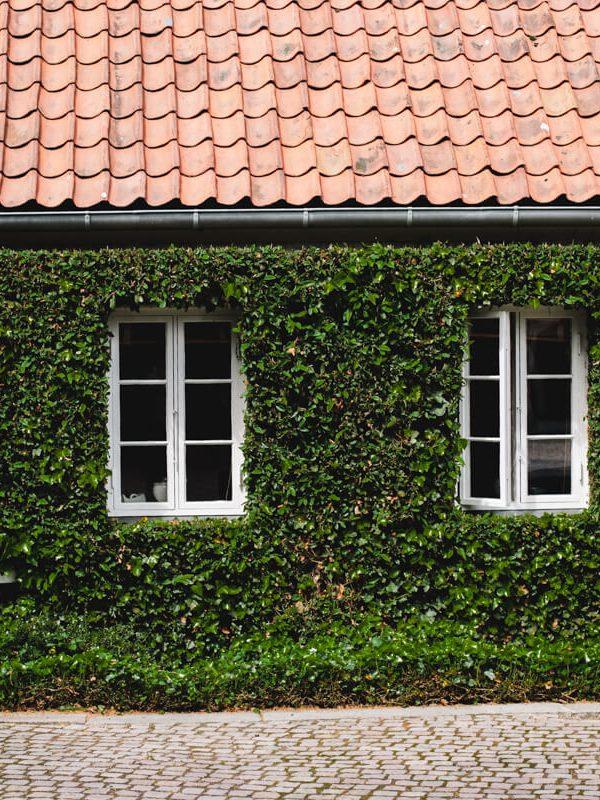 photographie voyage musée louisana museum Danemark copenhague atelier camion